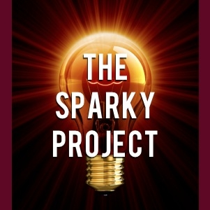 Share your Opinion in THE SPARKY PROJECT Forum